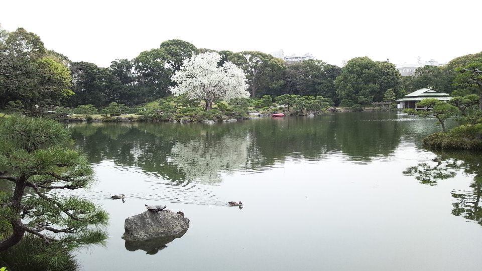清澄白河散歩2