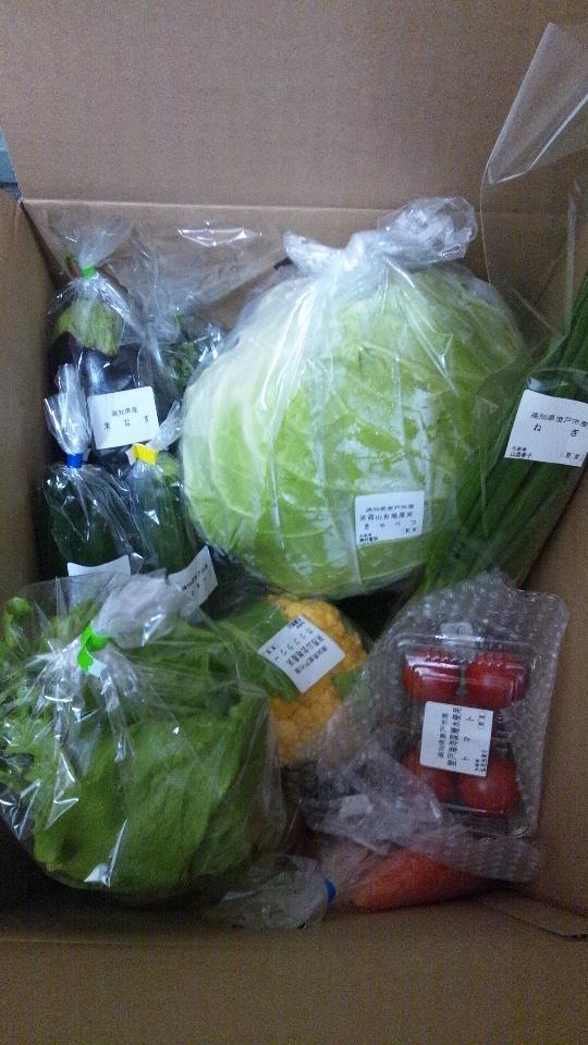 ふるさと納税で山盛りの野菜セット!