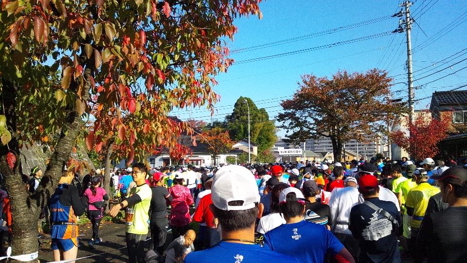 富山マラソン快晴、そして完走